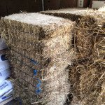 compressed-hay