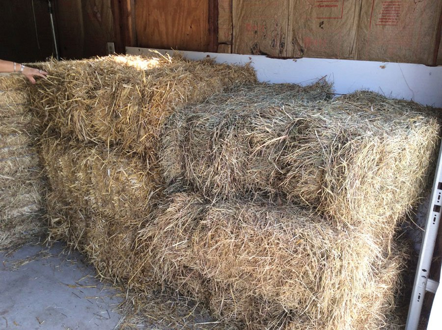 Hay & Straw supplier Yorktown Feed and Seed - Home owners and contractors welcome